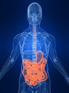Причины нарушений всасывания в кишечнике