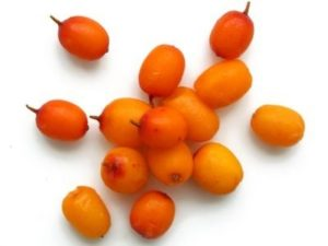 sea-buckthorn-oil-with-hemorrhoids-1