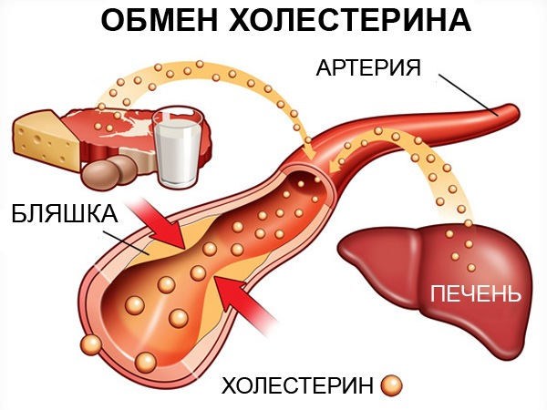 холестерин очень низкой плотности что это такое