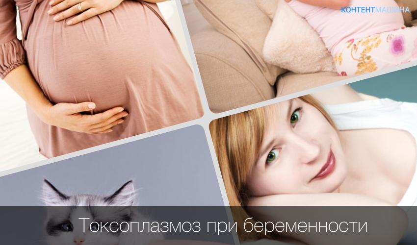 Токсоплазмоз симптомы у беременной 83